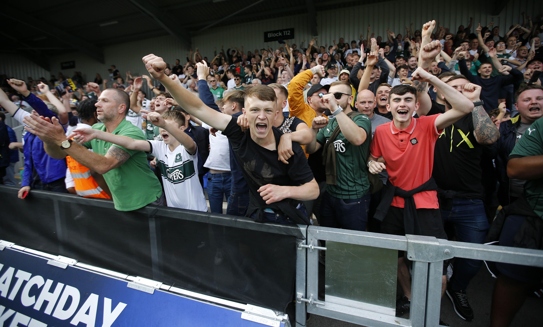 Green Army at AFC Wimbledon